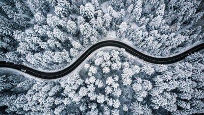 Plakat Jazda w lesie po śniegu, widok z lotu ptaka
