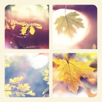 Plakat Jesień kolażu
