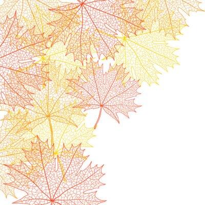 Plakat Jesień liść klonu makro. Bacground Vector.