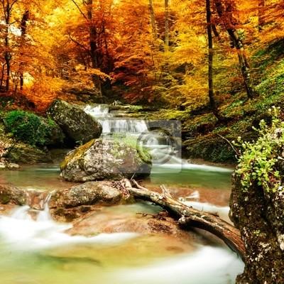 Plakat Jesienią creek lasy z żółtym drzew