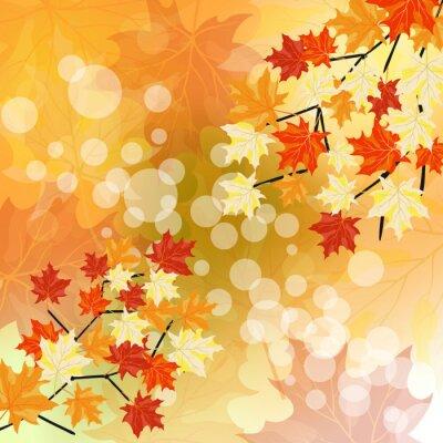 Plakat jesienią klony