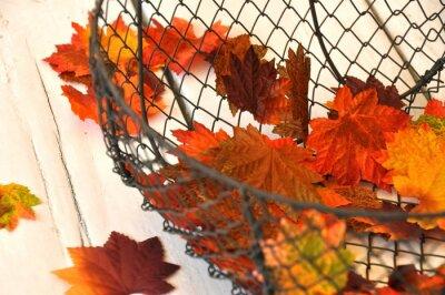 Plakat Jesienne liście w koszu z drutu