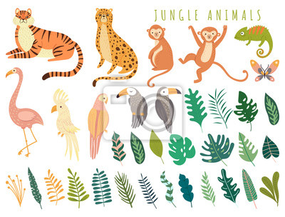 Plakat Jungle wild animal and exotic bird with exotic tropical leaves. Set with Isolated vector of tiger, monkey, leopard, chameleon, cockatoo, flamingos, parrot, cockatoo, toucan. Cartoon illustration