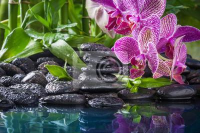 kamienie stosu, różowa orchidea i bambus w kroplach wody