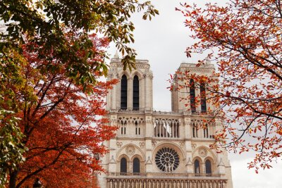 Plakat Katedra Notre Dame w Paryżu