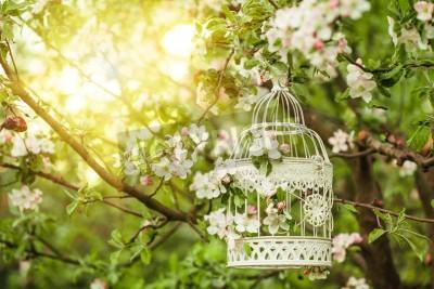 Plakat Klatka dla ptaków na drzewie jabłoni kwiat słońca.