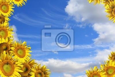 Plakat Kolaż - dekoracyjne ramy ze słoneczników