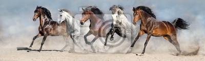 Plakat Konie biegają szybko w piasku przeciw dramatycznemu niebu
