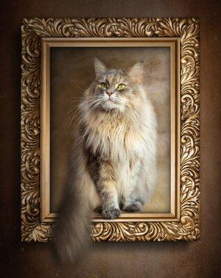 Plakat Kot siedzi w złotej ramie