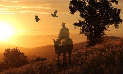 Plakat Kowboj jedzie w złotej słońca na pomarańczowo łąka z ptaki latające powyżej.