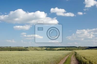 Krajobrazu wiejskiego z pola, drogi i chmury