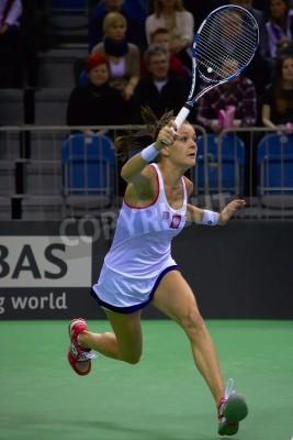 Plakat Krakow, POLAND - February 8, 2015 - Agnieszka Radwanska during Fed Cup 2015