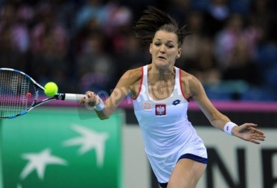 Plakat KRAKÓW, POLSKA - 07 lutego 2015: Agnieszka Radwańska podczas Fed Cup tenis w Polsce