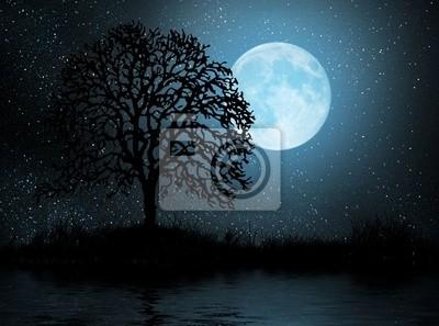 Księżyc I Drzewa