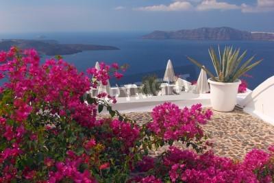 Plakat Ładny taras na wyspie Santorini z kwiatów bugenwilli i widok na kalderę Grecja