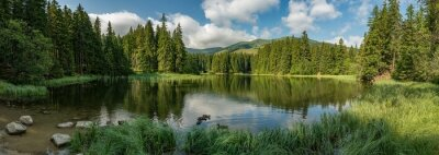 Plakat lake in the forest in lower tatra mountains
