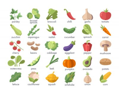 Plakat Large set of named colorful vegetables on white for use as design elements for food and nutrition themes, vector illustration