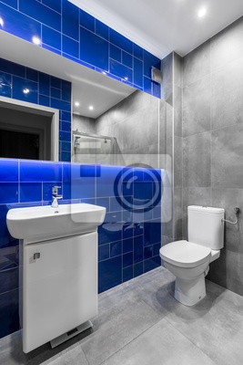 łazienka W Szarych I Niebieskich Kolorach Plakaty Redro