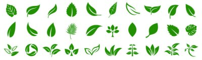 Plakat Leaf icons set ecology nature element, green leafs, environment and nature eco sign. Leaves on white background – vector