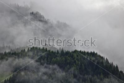 Plakat Lesiste górskie grzebienie w austriackim Alps bawją się przesłoniętym mgłą i chmurami