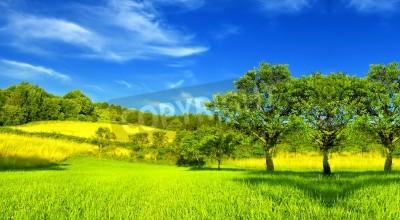 Plakat Letni krajobraz