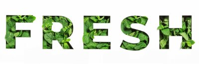 Plakat Lettering of English word fresh made of green natural leaves and cut paper isolated on white. Menthol font