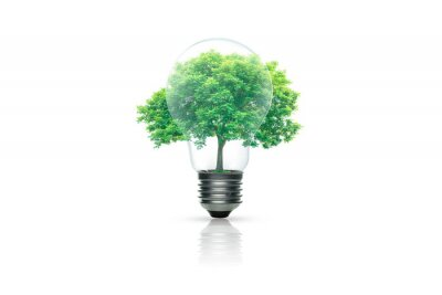 Plakat Light bulb with green tree inside isolated on white background. Green energy concept.