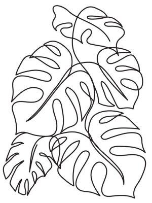 Plakat Liście Monstera Tropical. Rysowanie grafiki liniowej