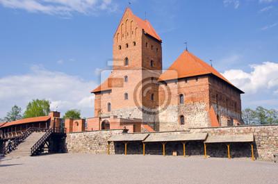 Plakat Litewski król zamek w Trokach
