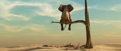 Plakat Lonely elephant on tree