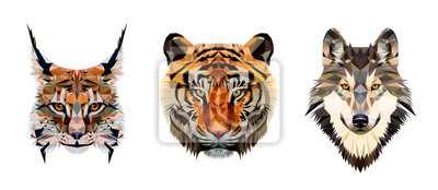 Plakat Low poly triangular tiger, lynx and wolf heads on white background, vector illustration isolated.  Polygonal style trendy modern logo design. Suitable for printing on a t-shirt.