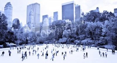Plakat Łyżwiarzy zabawę w nowojorskim Central Parku jesienią