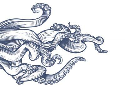 Plakat Macki ośmiornicy. Ręcznie rysowane ilustracji wektorowych w technice grawerowania na białym tle.