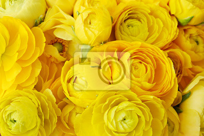 Plakat Macro shot of beautiful bouquet of yellow ranunculus flowers with visible petal texture structure. Close up composition with bright patterns of flower buds with a lot of copy space for text. Top view.