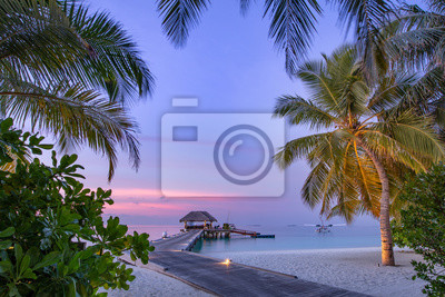 Plakat Maldives resort island in sunset with wooden jetty, amazing colorful sky. Perfect sunset beach scenery. Detail of palm leaves on foreground. Vacation and beach relaxation, summer holidays background