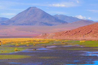 Plakat Małe bagna w Atakama.