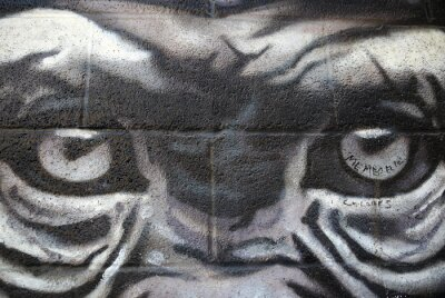 Plakat małpa oczy graffiti-Beasain