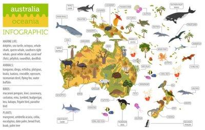 Plakat Mapa flory i fauny Australii i Oceanii, elementy płaskie. Zwierzęta, ptaki i życie w morzu duży zestaw. Zbuduj swoją kolekcję infografiki geografii