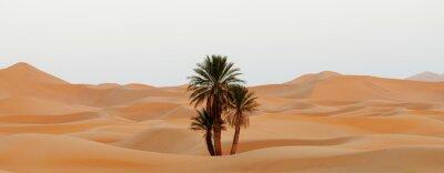 Plakat Maroko. Wydmy w Sahary