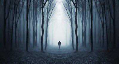 Plakat Mężczyzna w ciemnym lesie