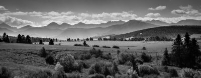 Plakat Misty Tatra Mountains - black and white panorama