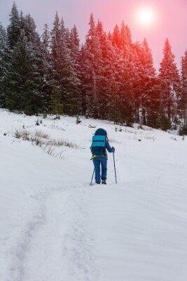 Plakat Młoda dziewczyna turysta z plecakiem wędrówki w górach zimą. Pojęcie wolności.