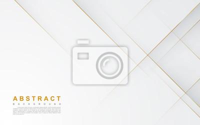 Plakat Modern abstract light silver background vector. Elegant concept design with golden line.