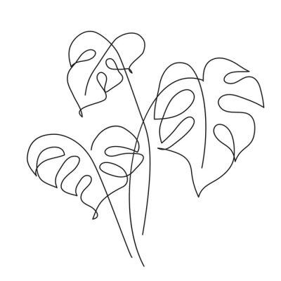 Plakat Monstera Tropical leaf