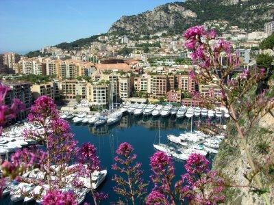 Plakat Monte Carlo, Monaco