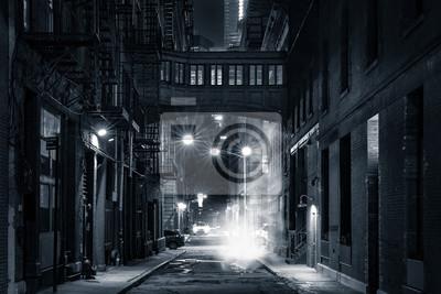 Plakat Moody monochromatyczny widok Staple ulicy skybridge nocą w Tribeca w Nowym Jorku