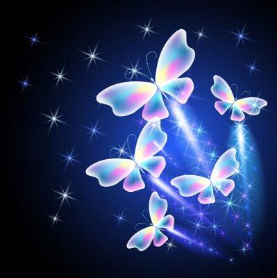 Plakat Motyl i świecące salute