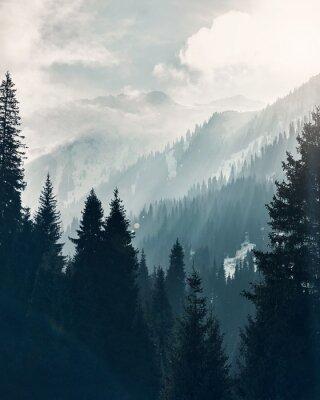 Plakat Mountain forest at fog sunrise background