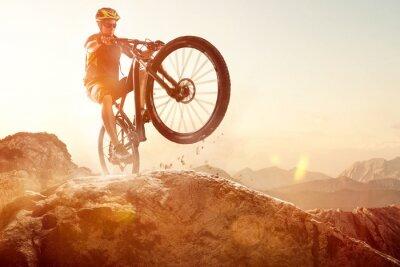 Plakat Mountainbiker wykonuje Wheelie