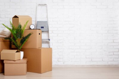 Plakat moving day concept - cardboard boxes, houseplants and other things over white brick wall background